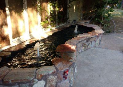 pond paradise ponds